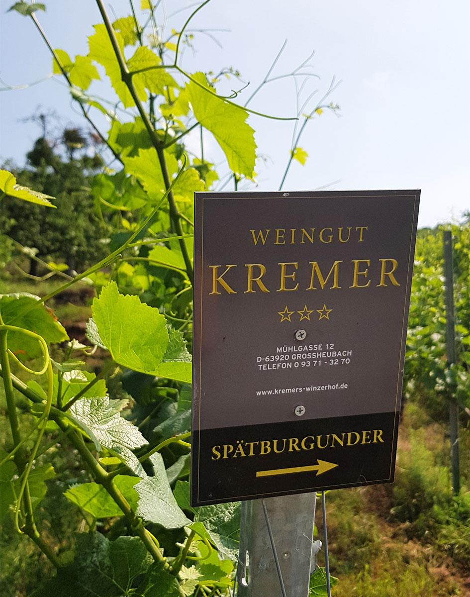 Weingut Kremer Churfranken
